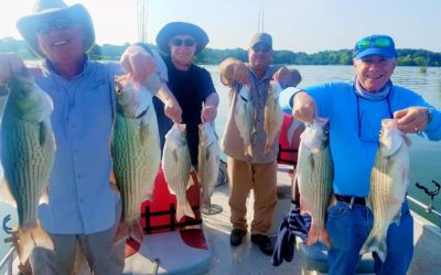 Lake Lewisville Fishing Guide-Wes Campbell-Striper Fishing
